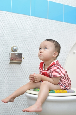 Toilet pictured not blogger's own.  Because that would be weird.  Apparently I can write about my loo, but not photograph it.  (This pic came from freedigitalphotos.net, as usual.) The baby is just because toilets with babies are much cuter than toilets without.
